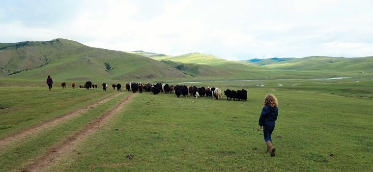 Bayarlalaa Mongolia !