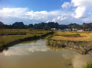 Vietnam_sihno-4