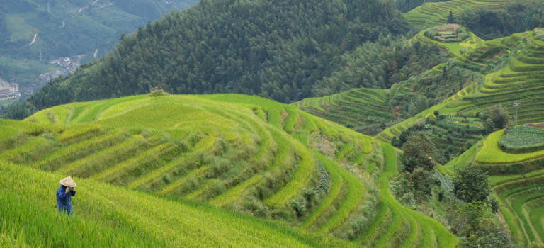 Des montagnes de Xingping aux rizières de Dazhaï!