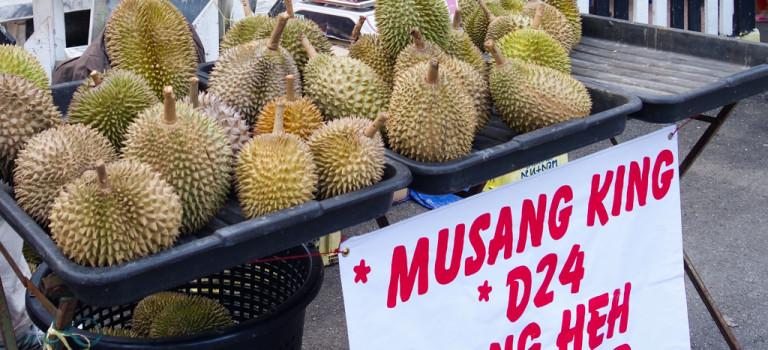 Mon voyage en Malaisie
