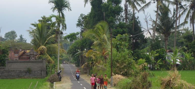 Bali, le bilan pas très réjouissant…